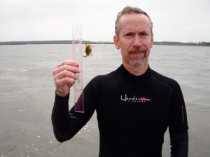 J. Emmett Duffy, VIMS Professor of Marine Science, receives 2013 Virginia Outstanding Faculty Award