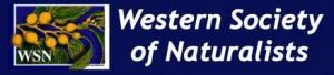 WSN_banner_logo