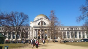 ZEN partners met at the Smithsonian Museum of Natural History in March 2014 to discuss past, current and future seagrass ecology research