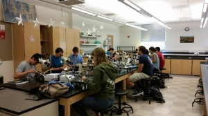 Ellie (front) and classmates process samples collected by the UC Davis ZEN class.