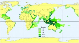 Seagrasses are found all over the world and provide important functions and services (image courtesy of Short et al. 2007: Global Seagrass Research Methods)