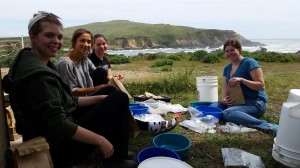 Ellie (left) and classmates conduct research at UC Davis' Bodega Marine Laboratory for the ZEN undergraduate course in Seagrass Ecosystem Ecology