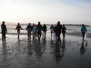The UCD ZEN students began sampling with the rising sun in Bodega Bay, California