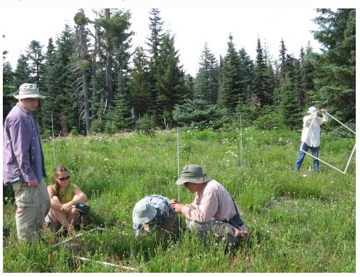 Research networks use identical protocols across broad spatial scales (Nutrient Network Global Research Cooperative)