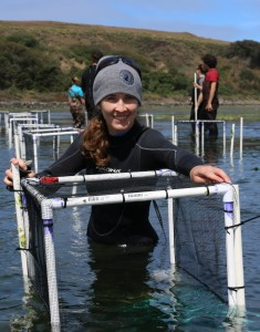 Pamela Reynolds and members of the Zostera Experimental Network sample seagrass biodiversity (Chris Nicolini)